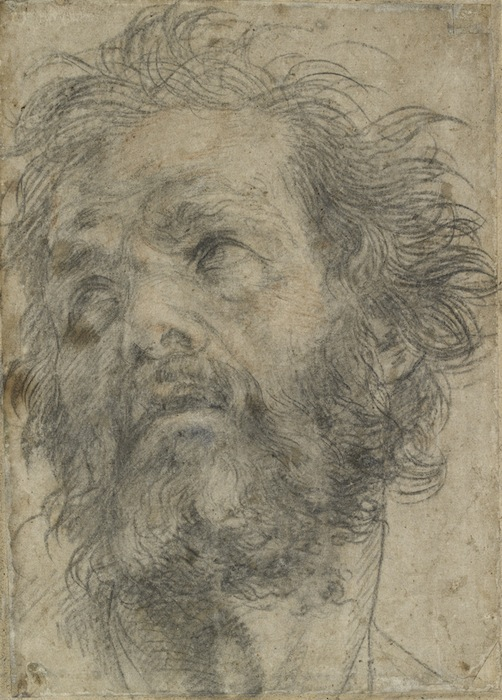 Andrea del Sarto's perfect chalk drawings | Apollo Magazine