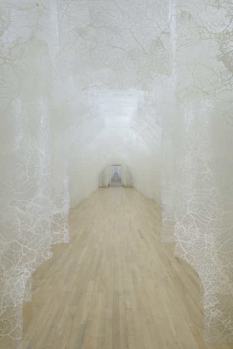 Installation view of Fragility